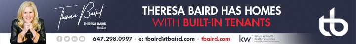 Theresa Baird Banner top